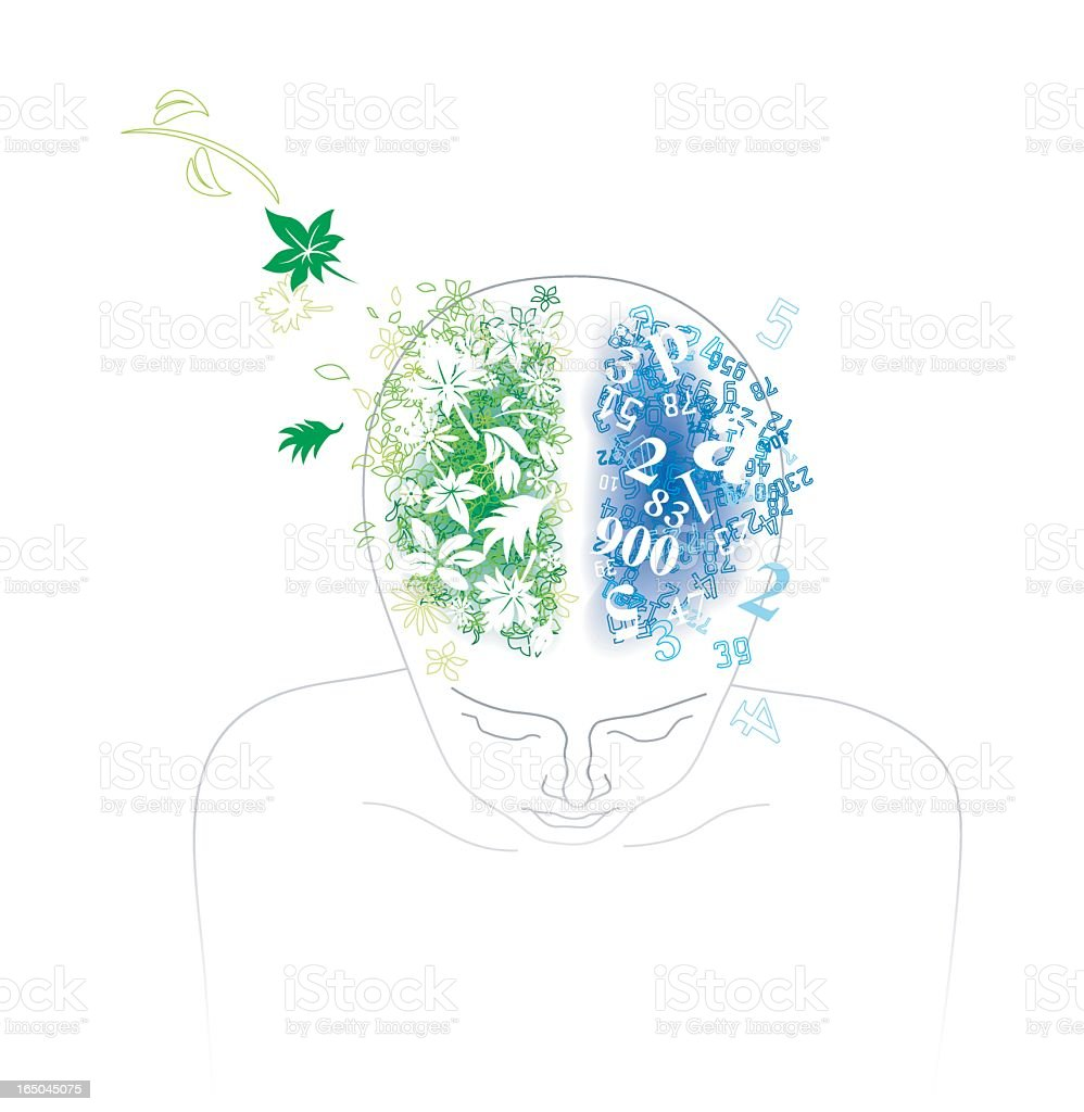 Human Parietal Lobe vector art illustration