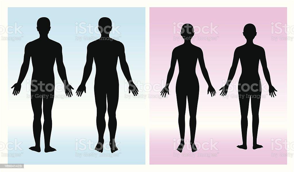 human silhouette vector art illustration