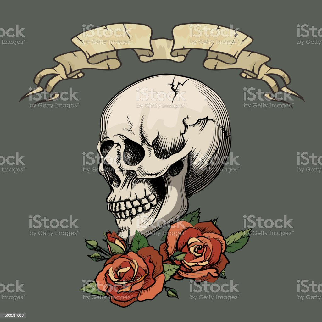 Human skull with roses royalty-free stock vector art