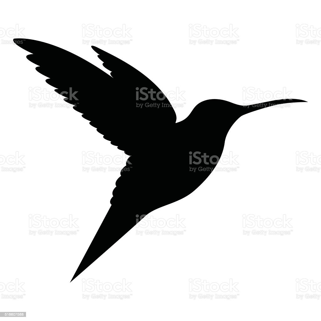 Humming bird bird flying in open air - VECTOR vector art illustration