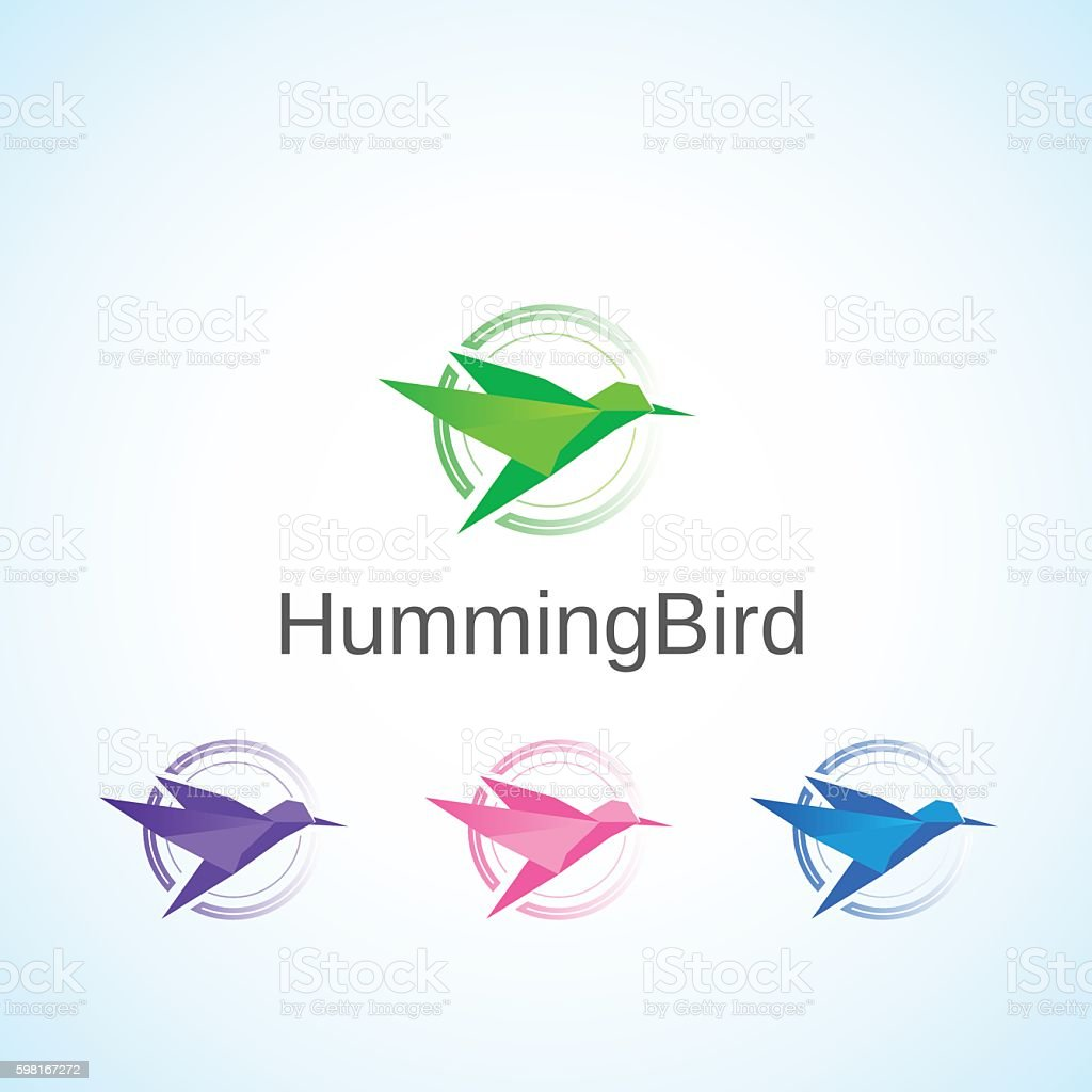 Humming Bird. vector art illustration
