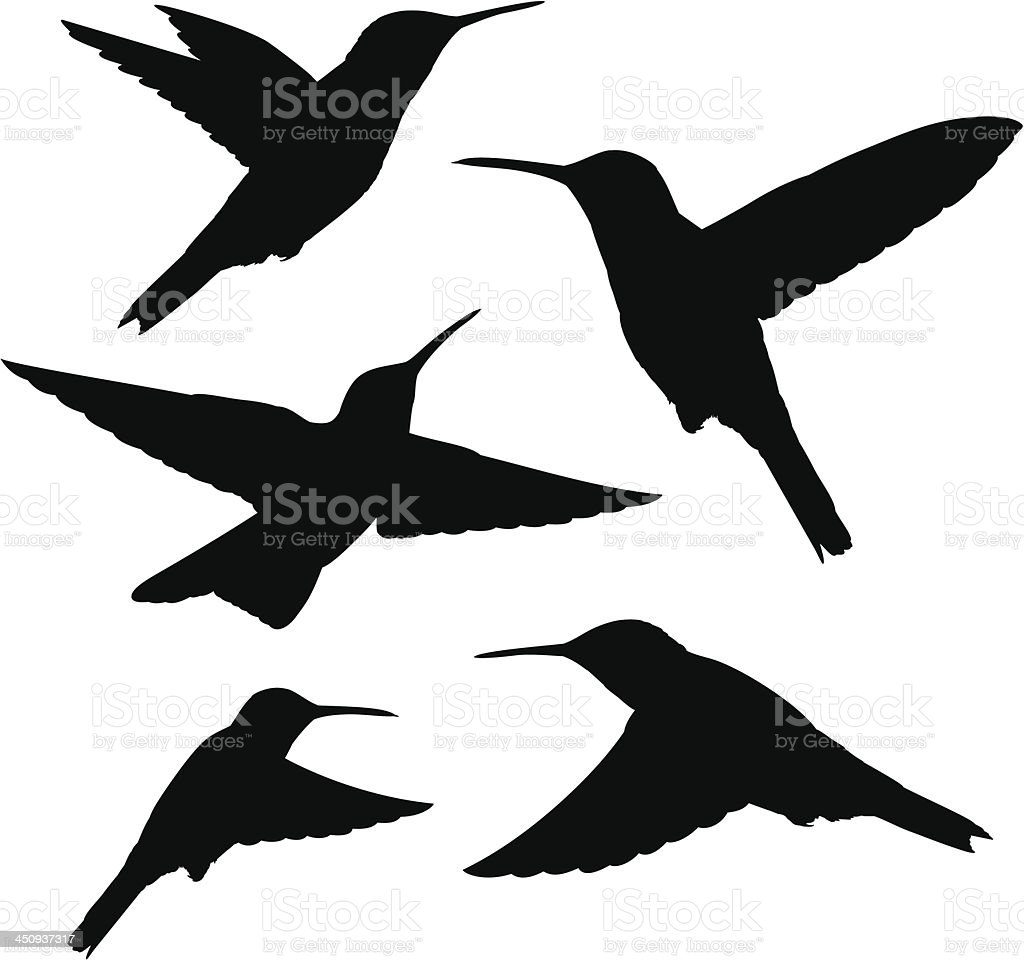 hummingbird silhouettes vector art illustration