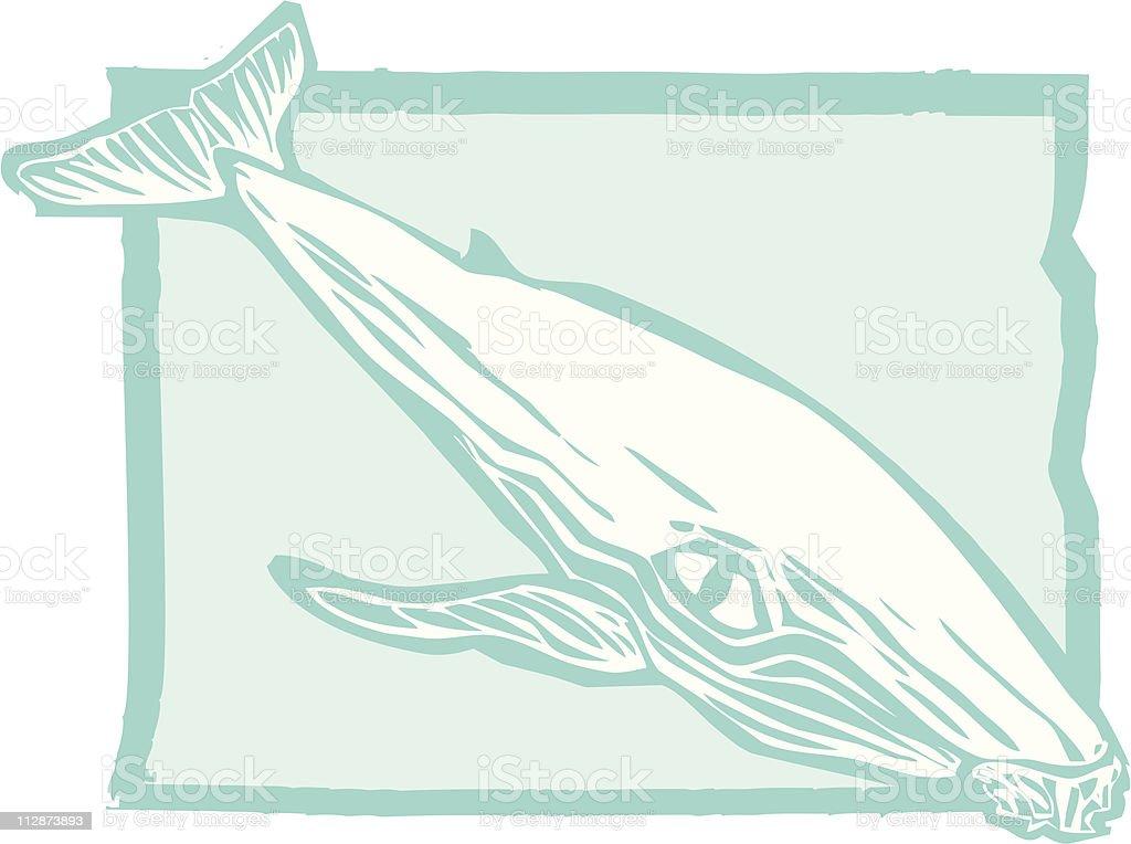 Humpback Whale vector art illustration