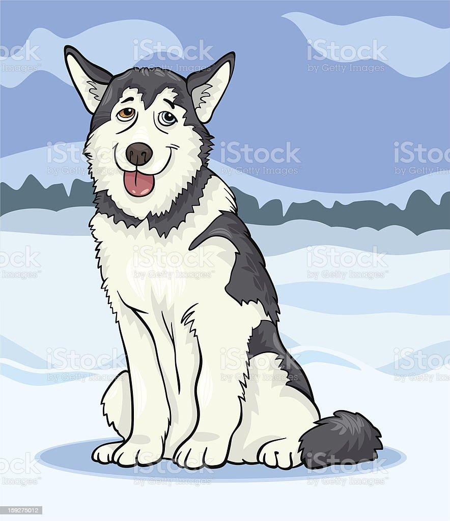 husky or malamute dog cartoon illustration royalty-free stock vector art