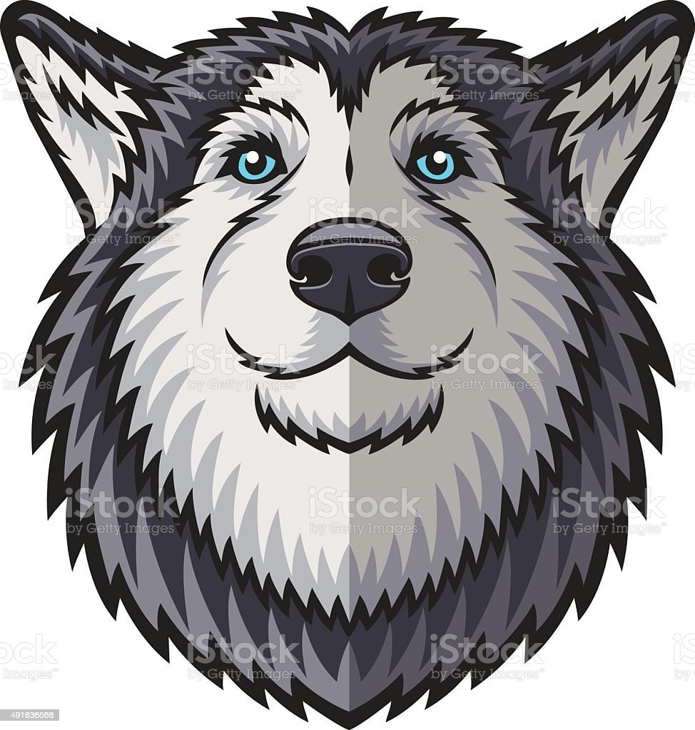 Husky vector art illustration