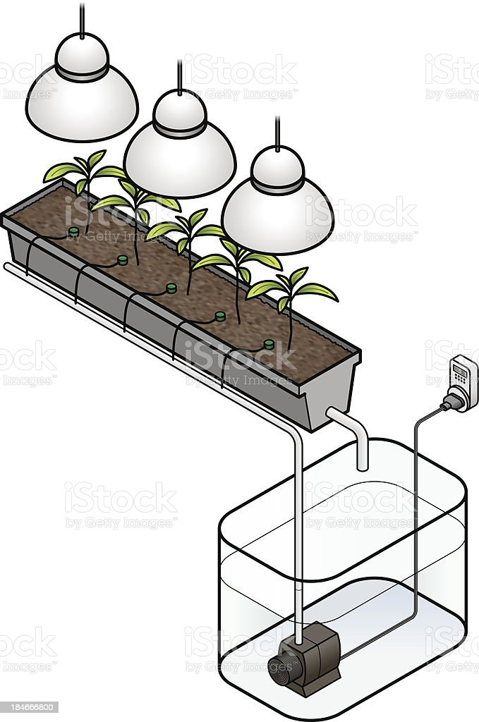 Hydroponics royalty-free stock vector art