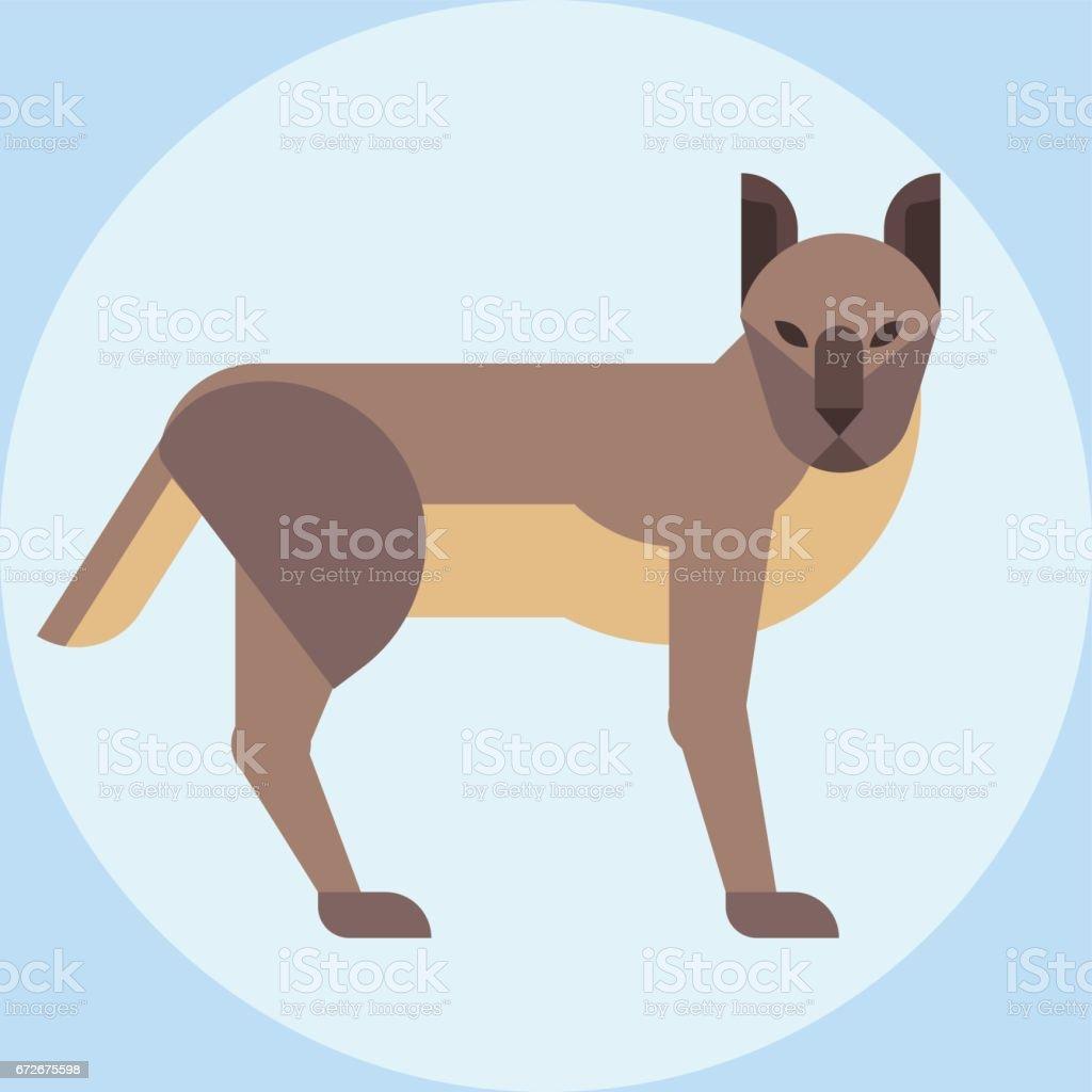 Hyena zoo young crocuta portrait character wildlife mammal predator dangerous wild animal vector vector art illustration