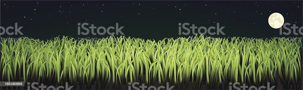 Hyper Realism Grass (Night Version) royalty-free stock vector art