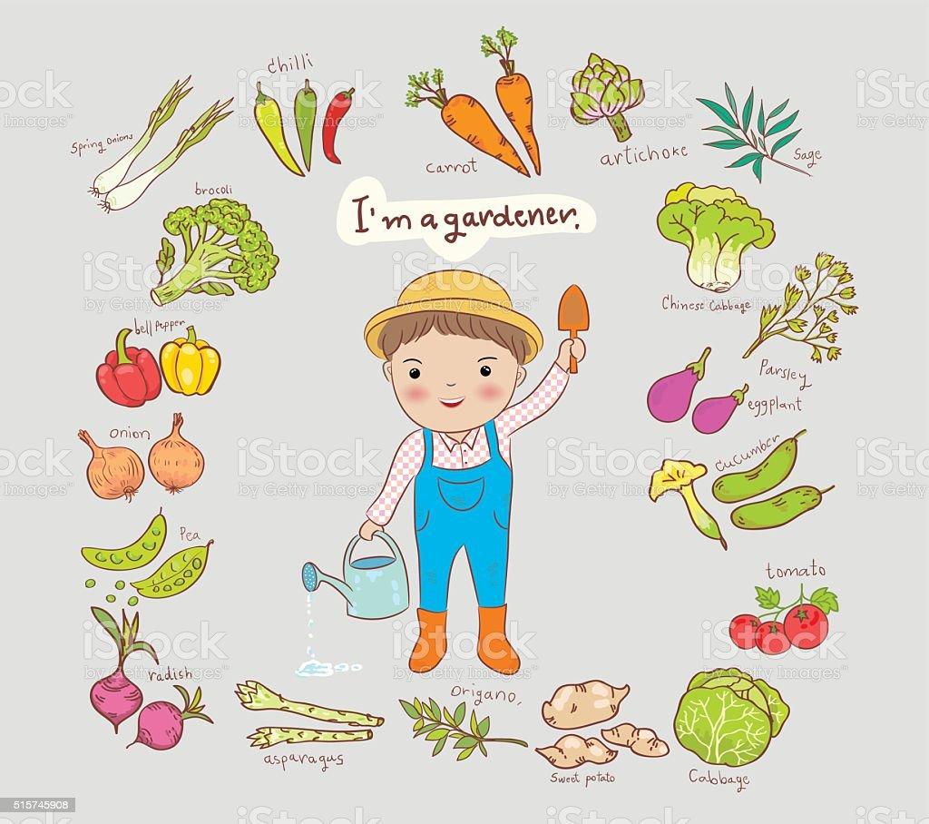 i am a gardener boy and vegetable vector illustration vector art illustration