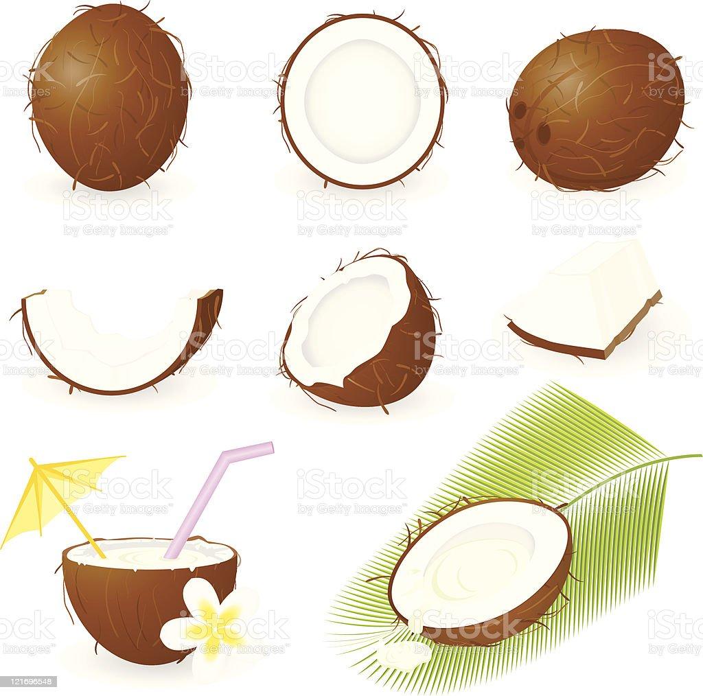 Icon Set Coconut royalty-free stock vector art