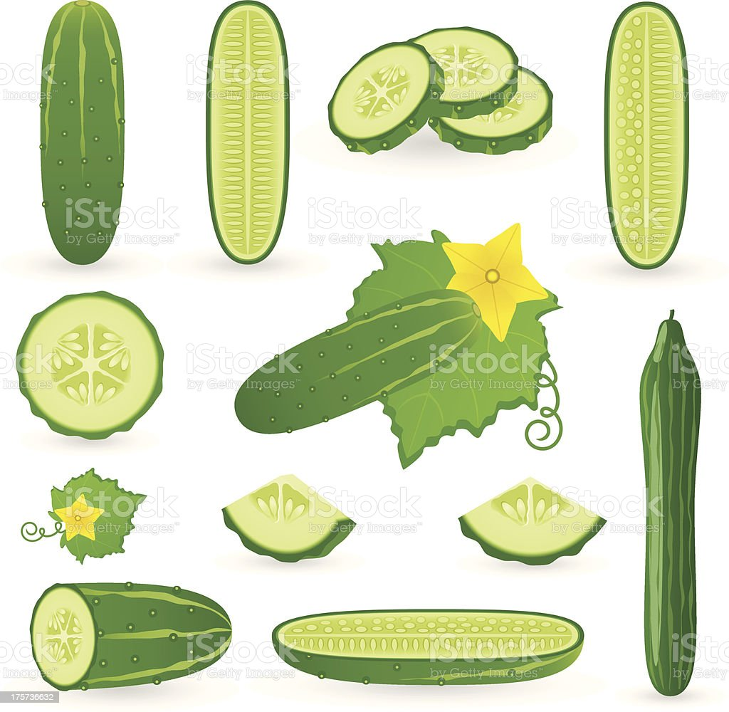 Icon Set Cucumber vector art illustration