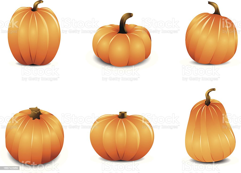 Icon set of six pumpkins in different shapes and sizes royalty-free stock vector art