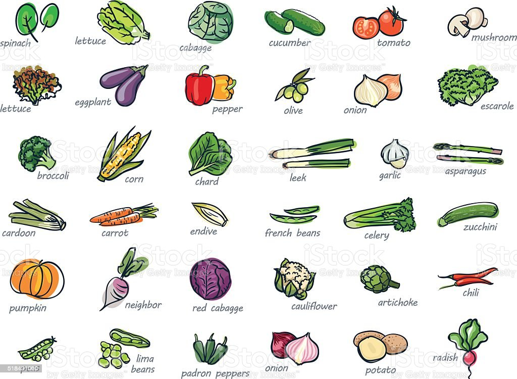 Icon set of vegetables vector art illustration