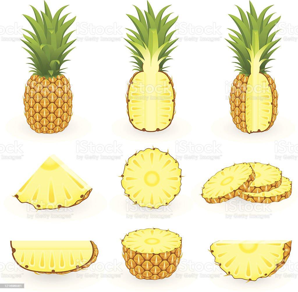 Icon Set Pineapple royalty-free stock vector art