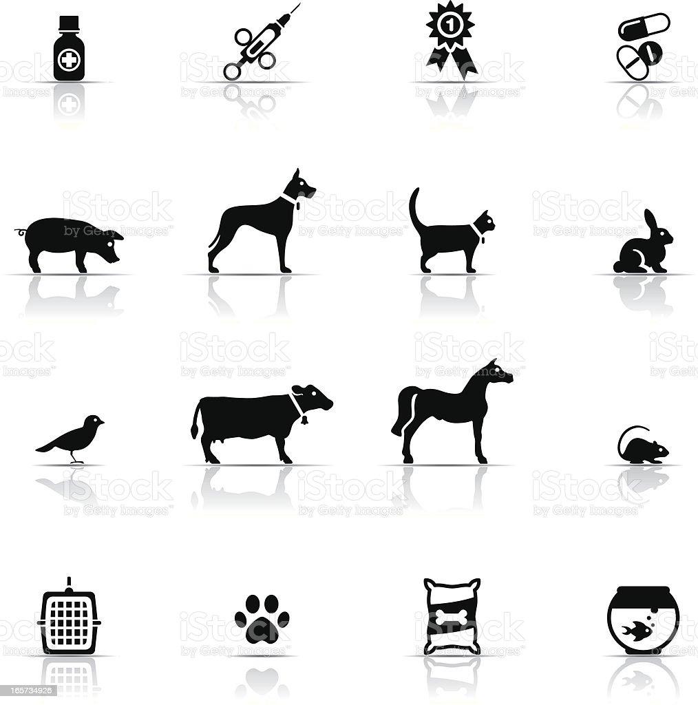 Icon Set, Veterinary vector art illustration