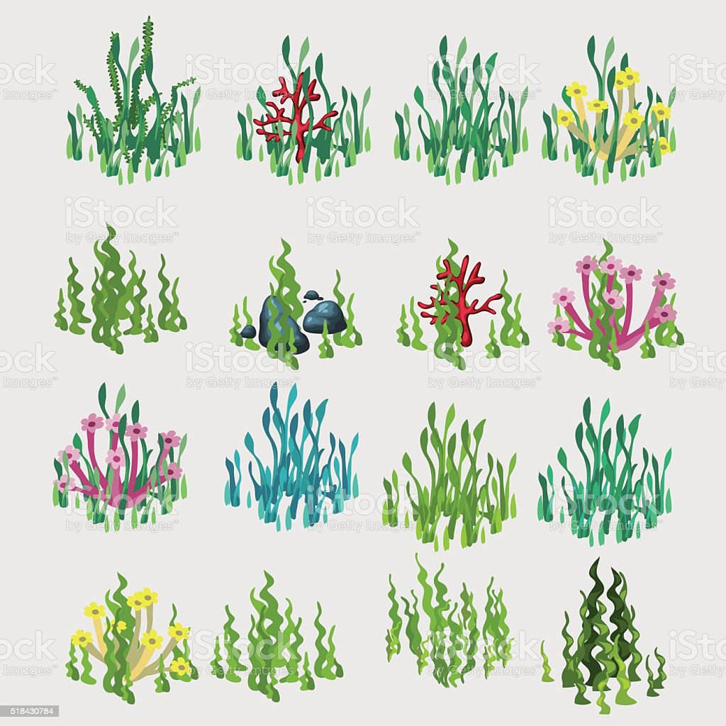 Icons grass with colorful flowers and coral vector art illustration