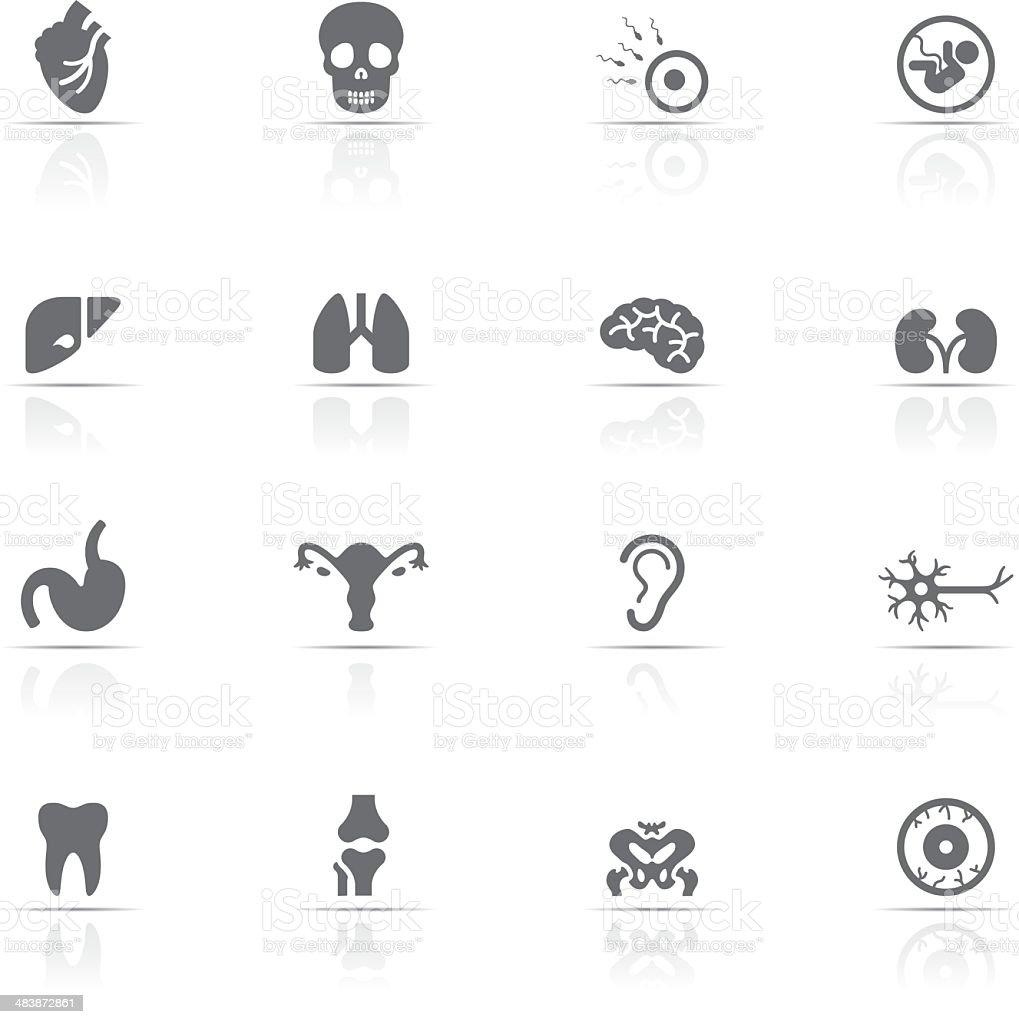 Icons set, Human Body vector art illustration