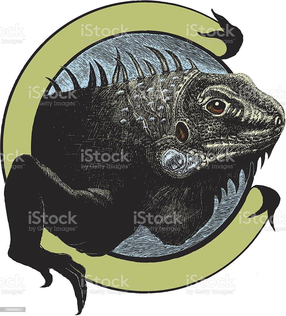 Iguana Illustration royalty-free stock vector art
