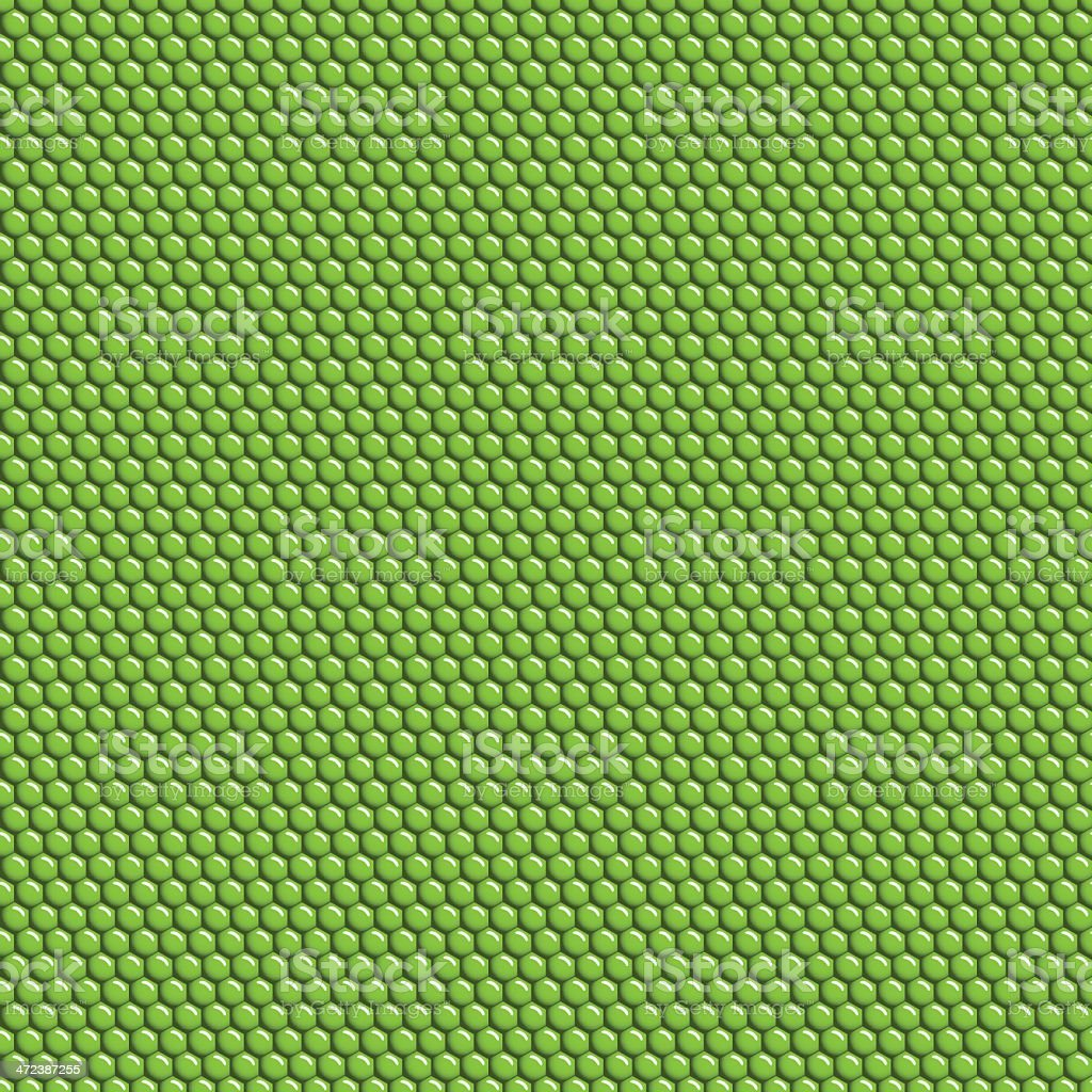 Iguana skin seamless pattern vector art illustration