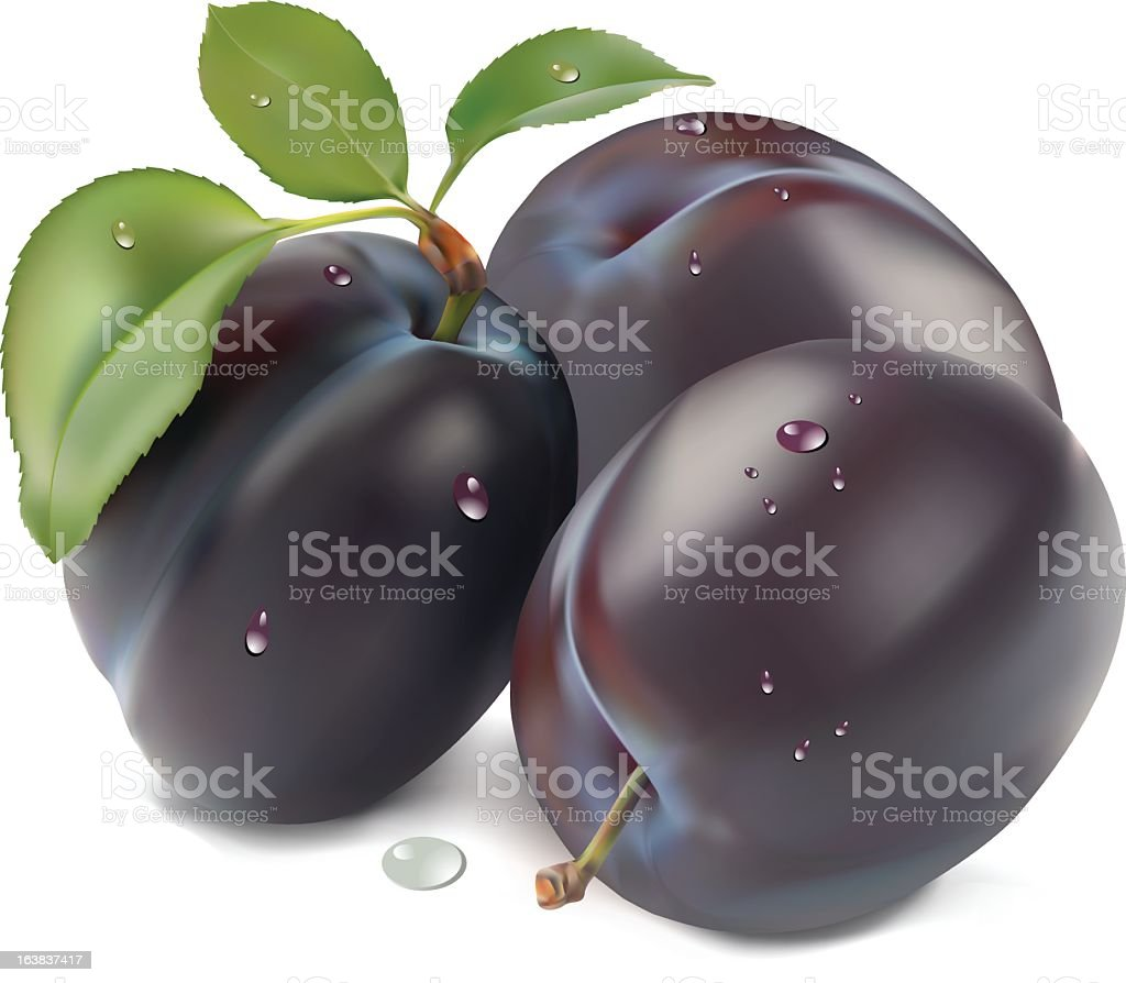 Illustrated 3d ripe plums with dew droplets on them vector art illustration