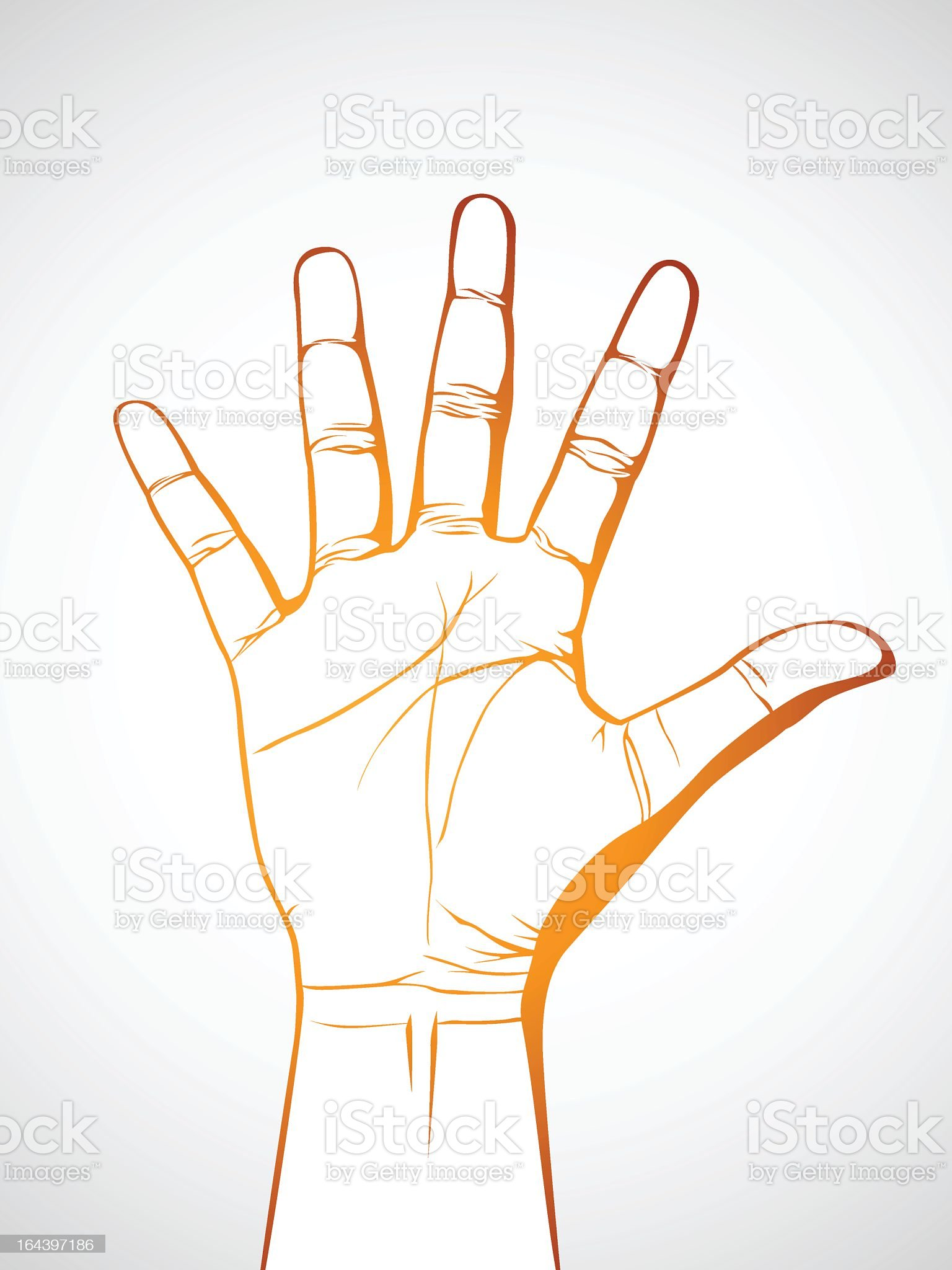 Illustrated hand and palm on white background royalty-free stock vector art