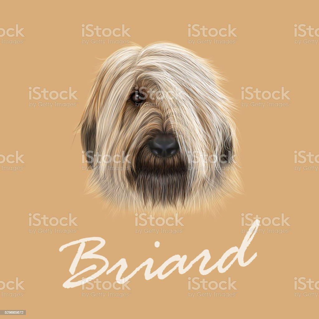 Illustrated Portrait of Briard dog. vector art illustration