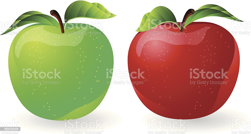 Illustrated red and green apples royalty-free stock vector art