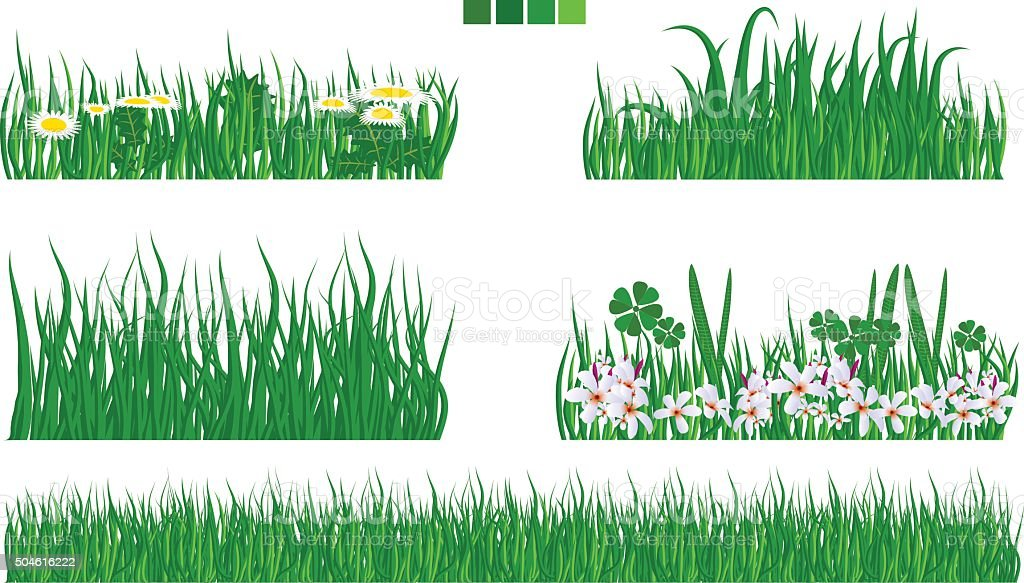 Illustrated vector green grass with flower and leaf set vector art illustration