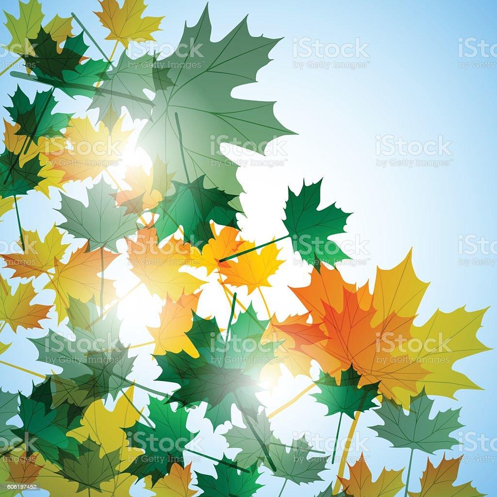 Illustration autumn motif. Maple leaves. Vector background vector art illustration