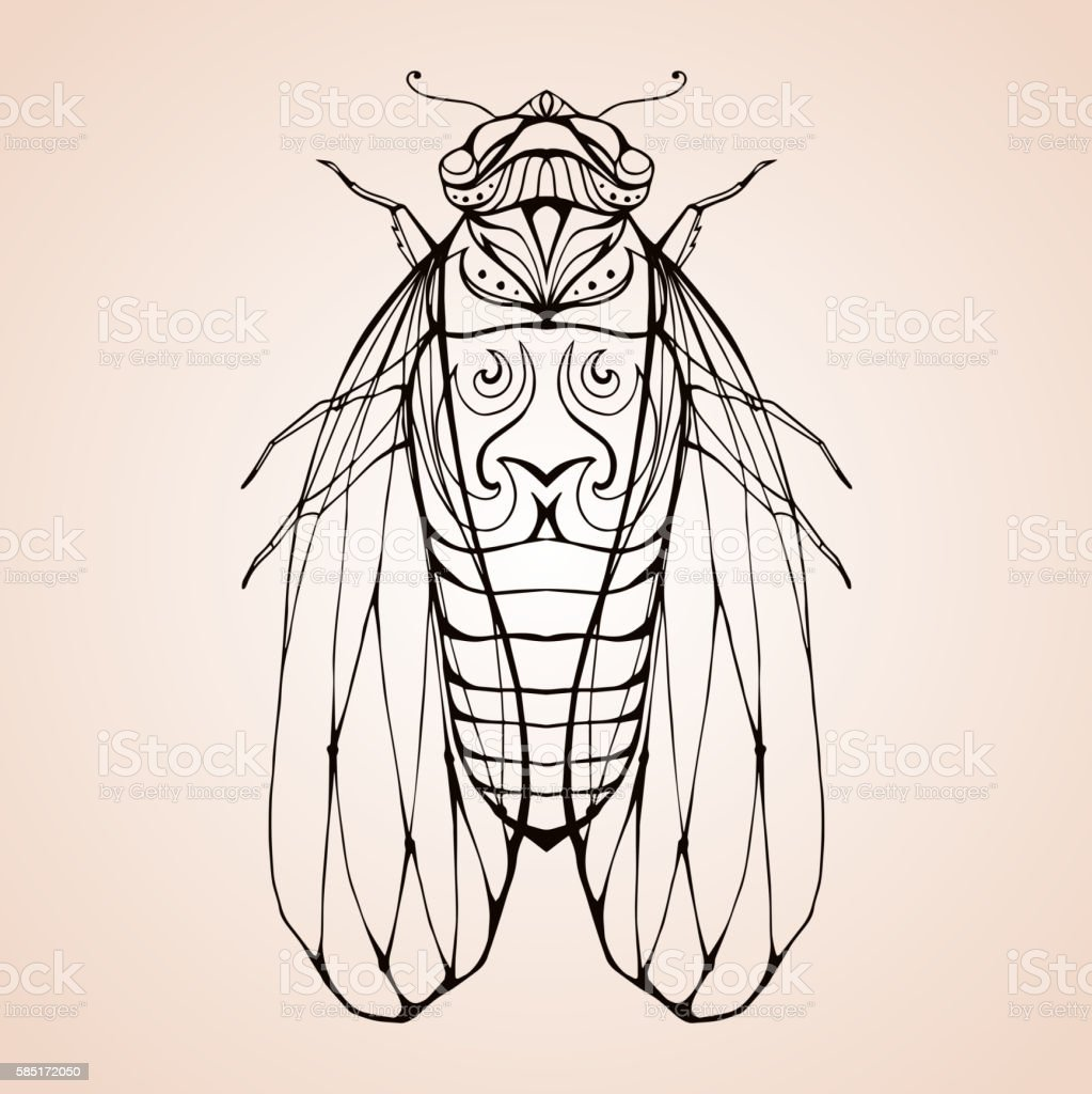Illustration cicada  with boho pattern. vector art illustration