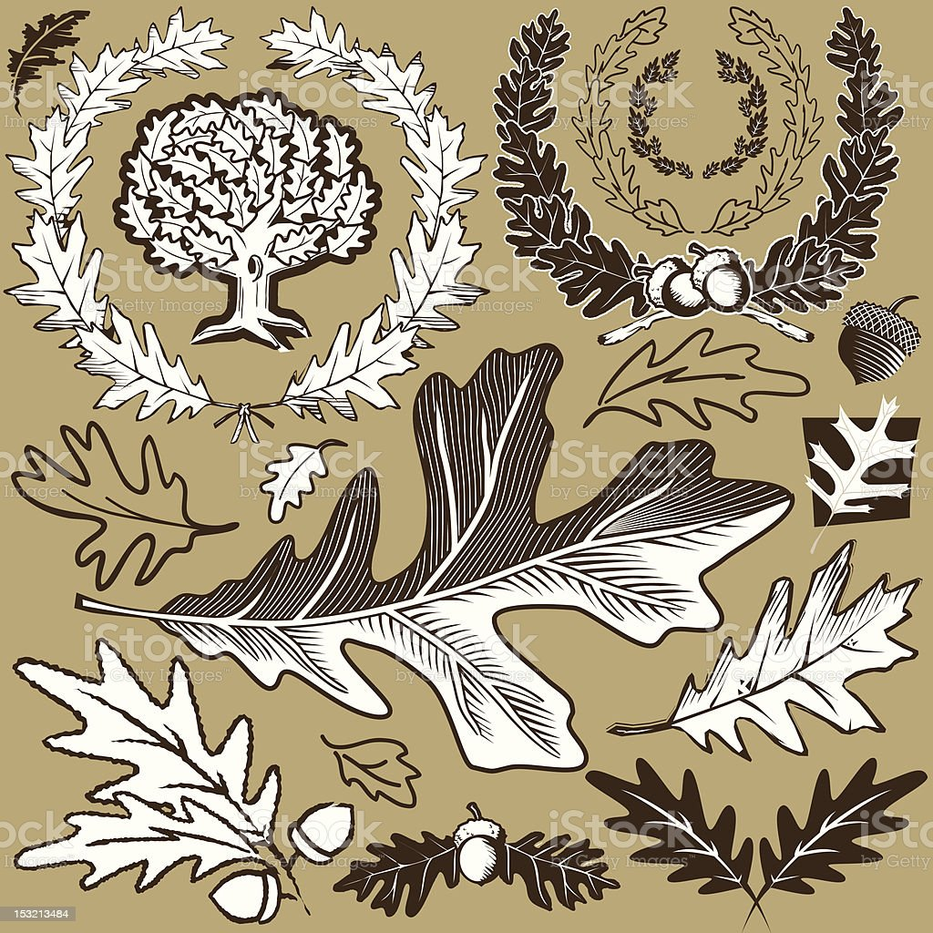Illustration depicting black, brown and white oak leaves royalty-free stock vector art