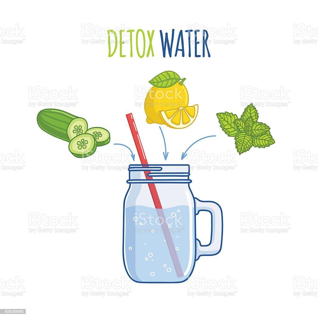 Illustration  «Detox water» vector art illustration