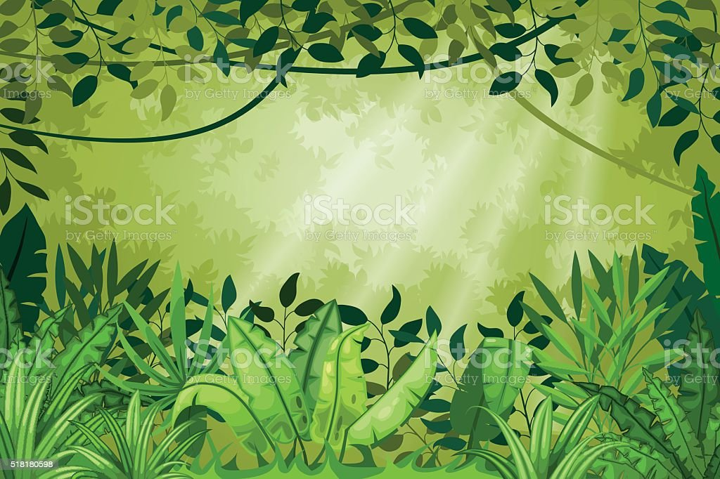 Illustration jungle landscape vector art illustration