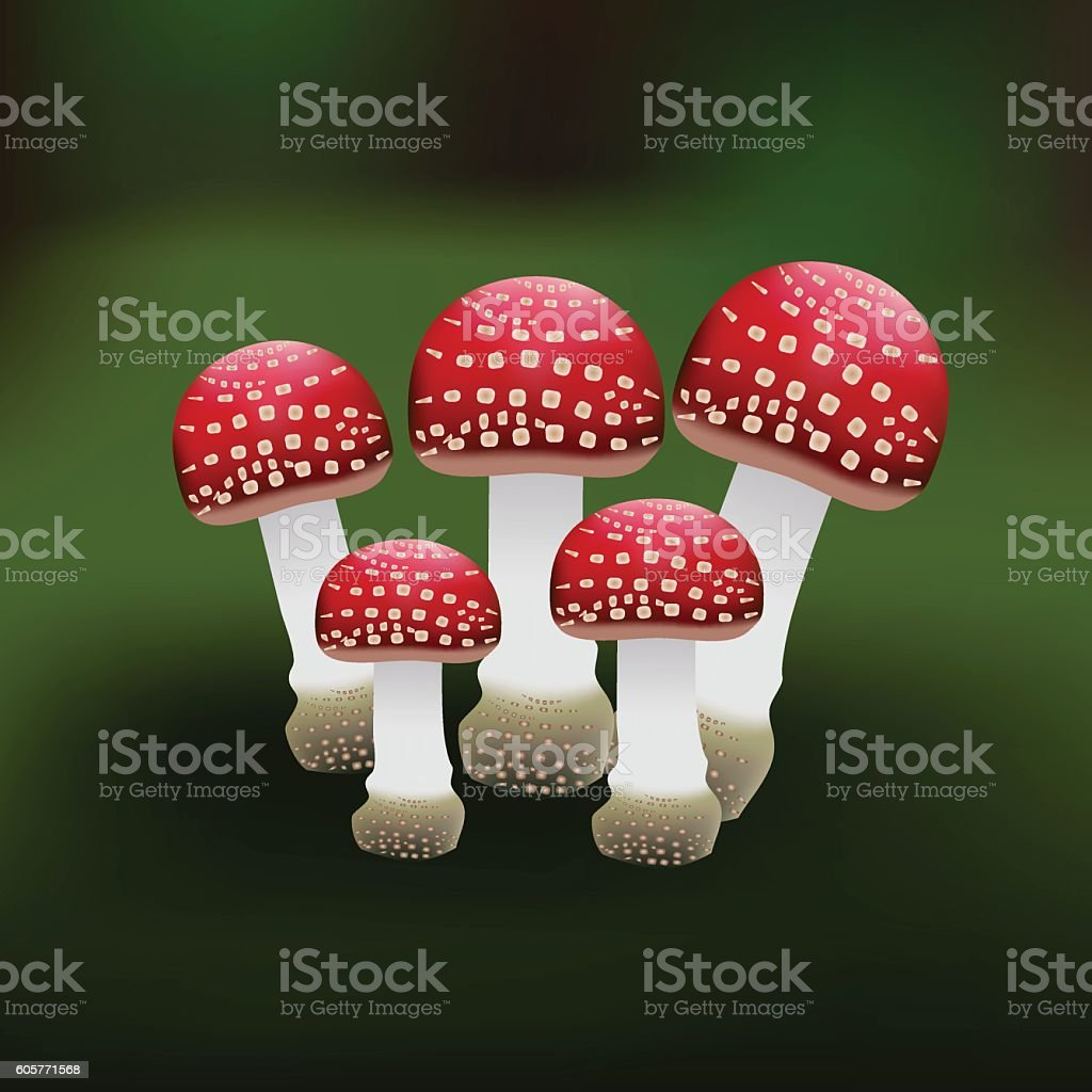 Illustration of a red mushroom vector art illustration