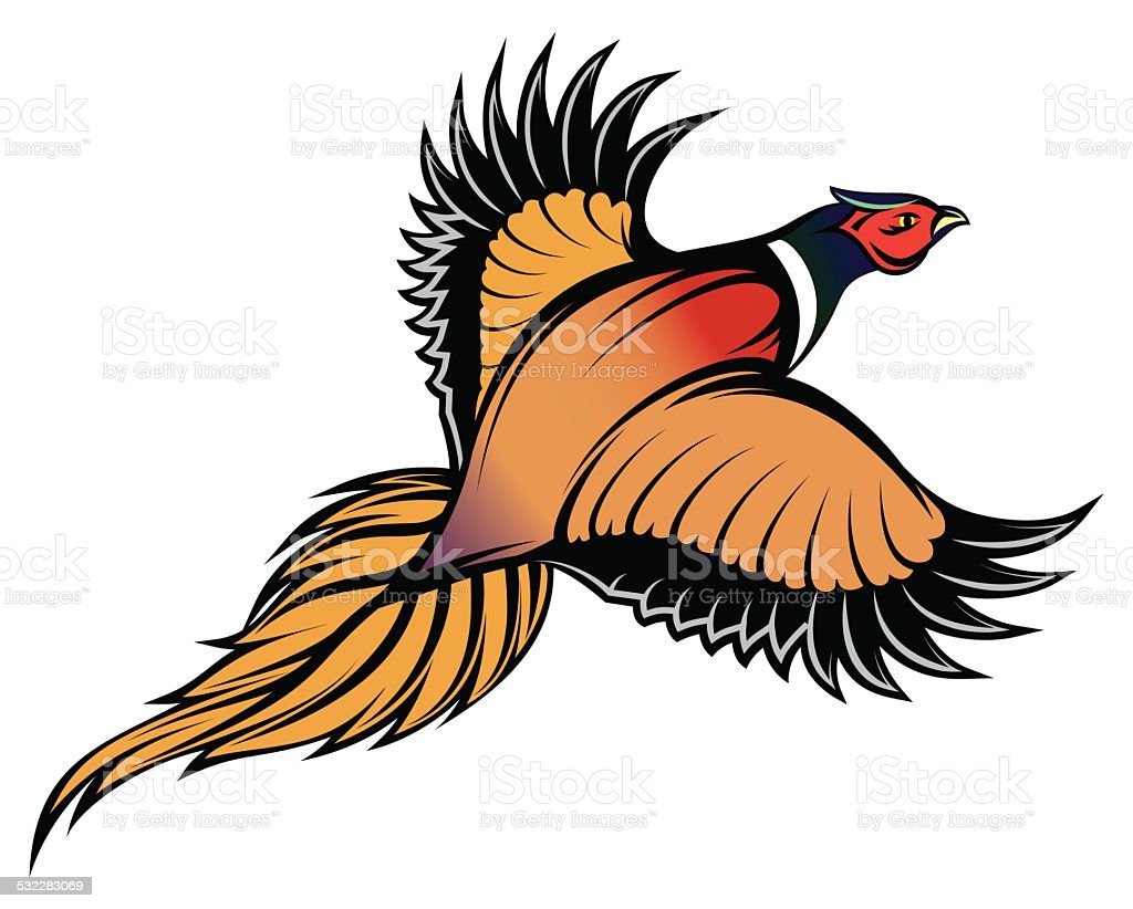 illustration of a stylish multi-colored flying pheasant vector art illustration