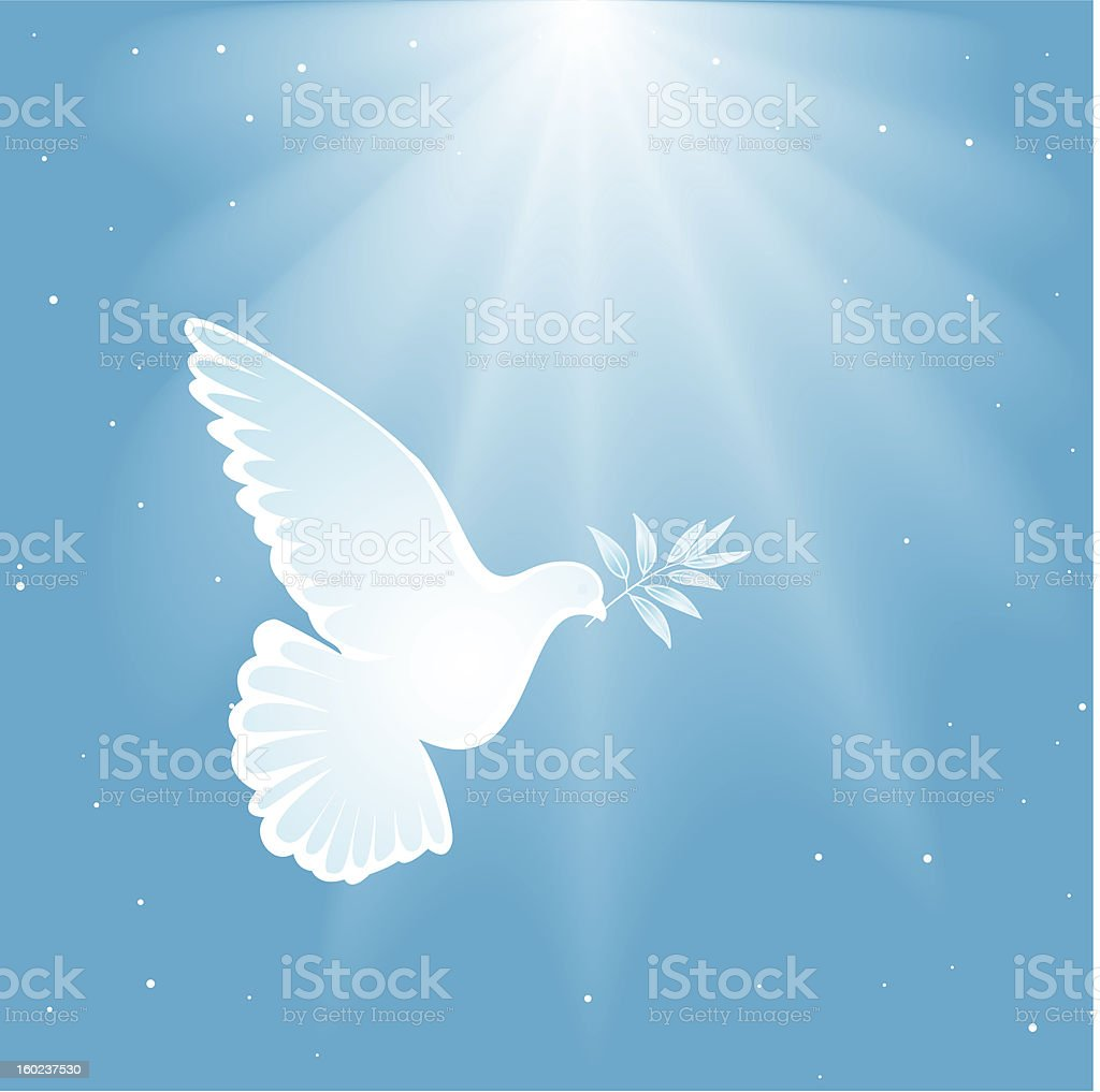 Illustration of a white dove on a blue background royalty-free stock vector art