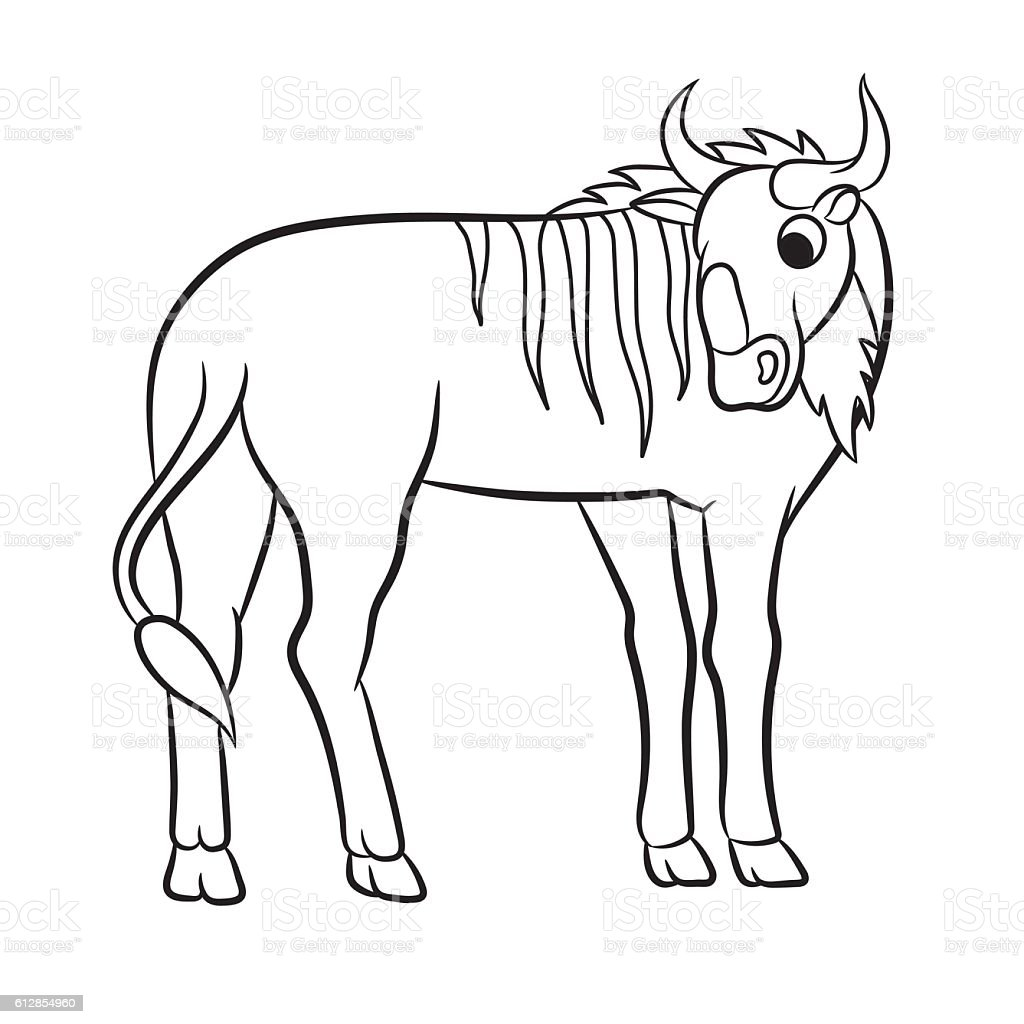 Illustration of a wildebeest vector art illustration