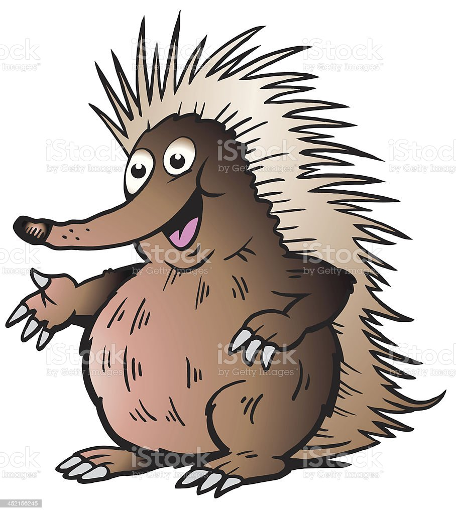 illustration of an Echidna or Hedgehog royalty-free stock vector art