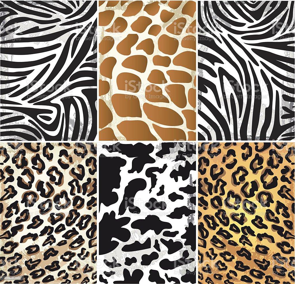Illustration of Animal Skin Textures vector art illustration