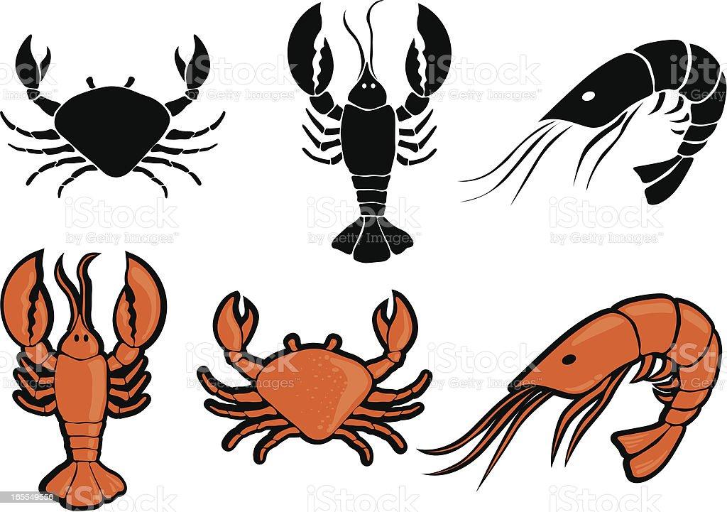 Illustration of black and orange sea food vector art illustration