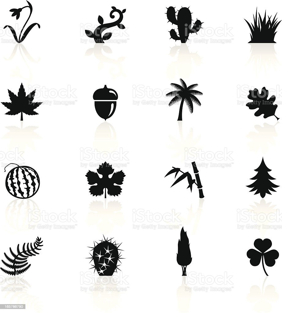 Illustration of black botanic symbols royalty-free stock vector art