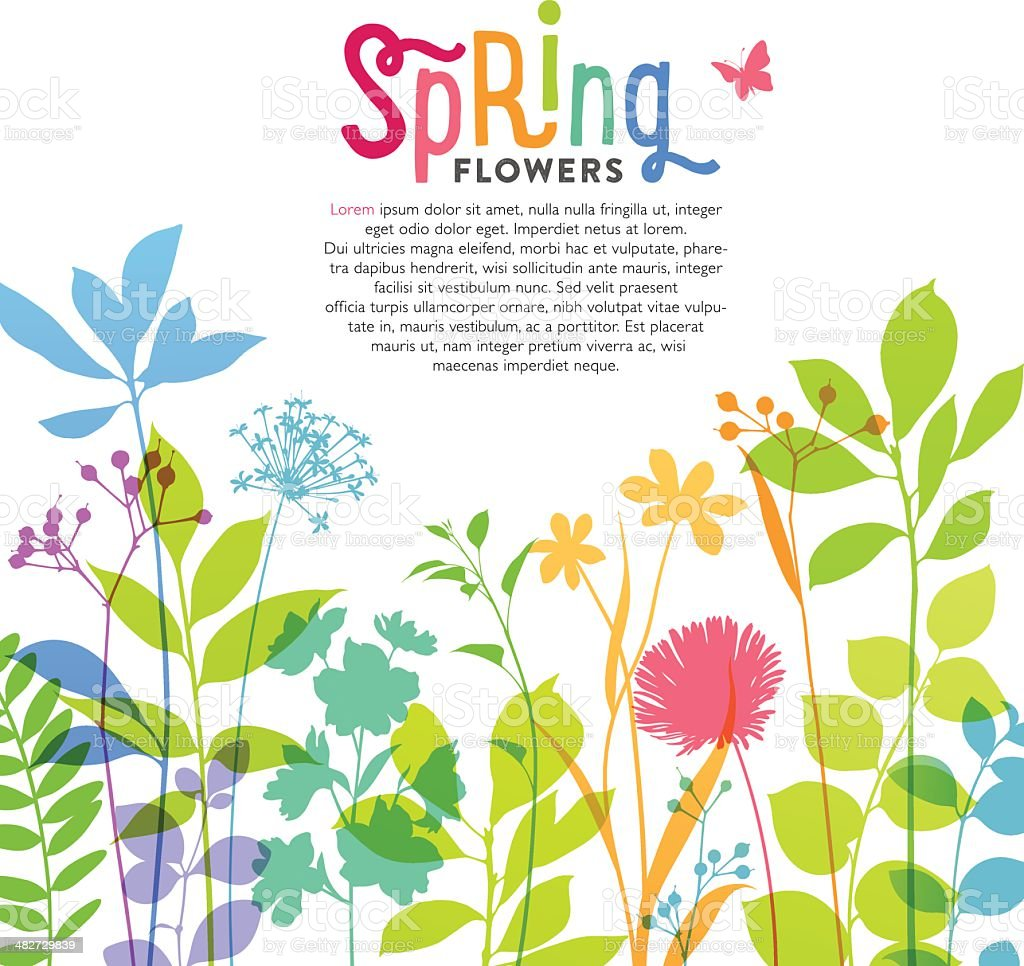 Illustration of colorful spring flowers and stems vector art illustration