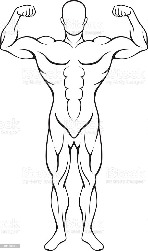Illustration of faceless muscular body royalty-free stock vector art
