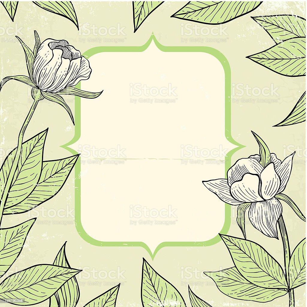 Illustration of flowers vector art illustration