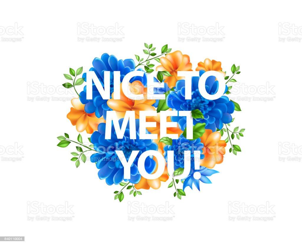 how to sign nice meet you