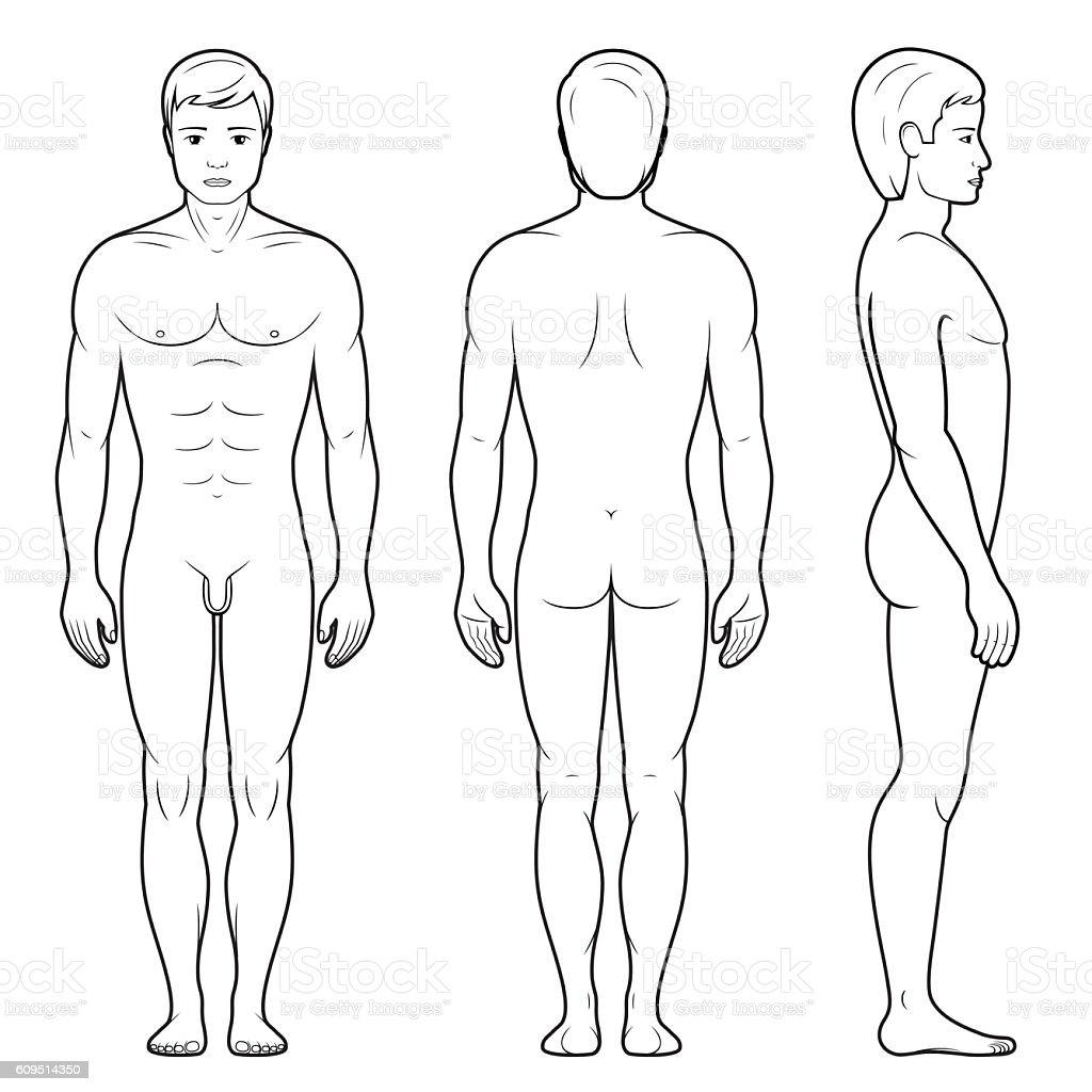 Illustration of male figure vector art illustration