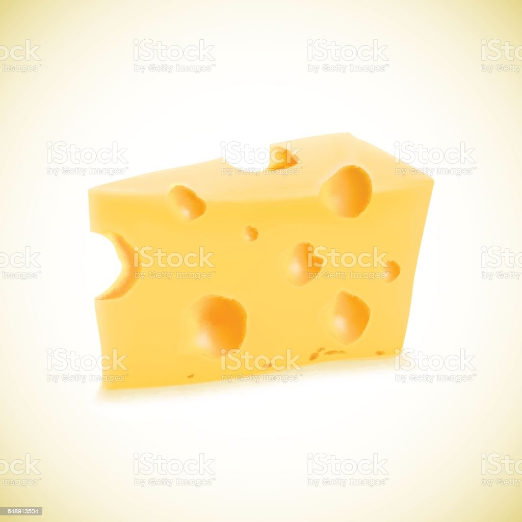 Illustration of organic cheese vector realistic icon vector art illustration