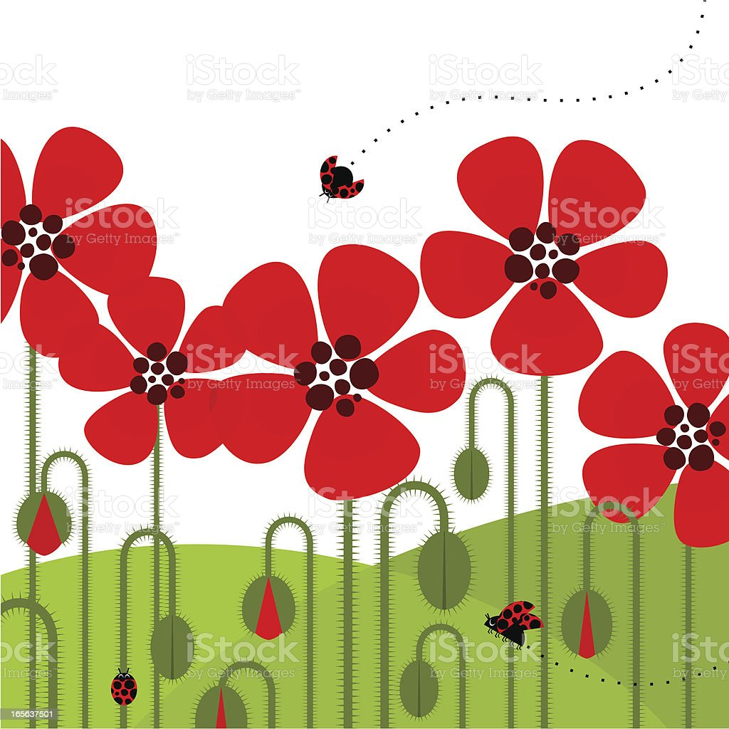 Illustration of red poppies with a ladybug flying by royalty-free stock vector art