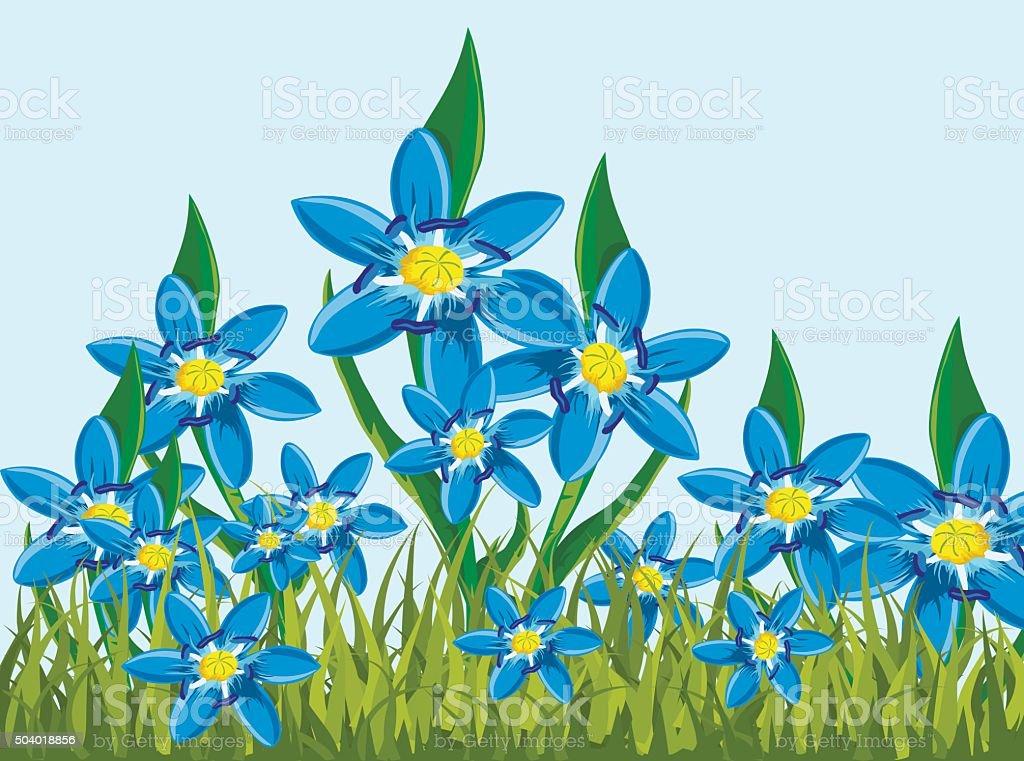 Illustration of s Scilla bifolia vector art illustration