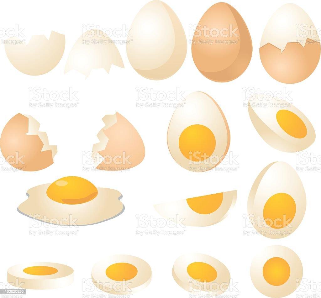 Illustration of Several types of eggs vector art illustration